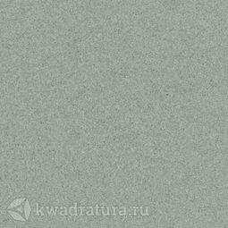 Линолеум Tarkett (Primo Plus) Cpri 311